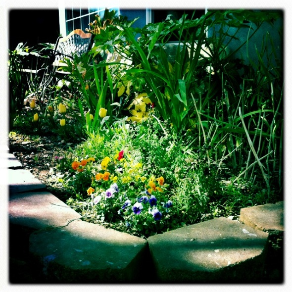Another front flower garden